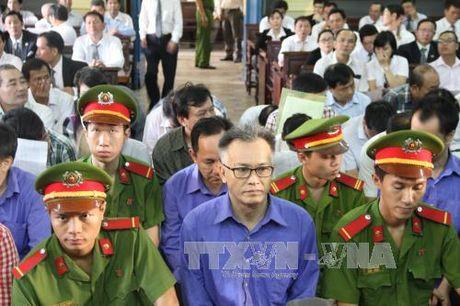 De nghi 3 an chung than trong vu an kinh te tai Cong ty CPTPCN Sai Gon - Anh 1