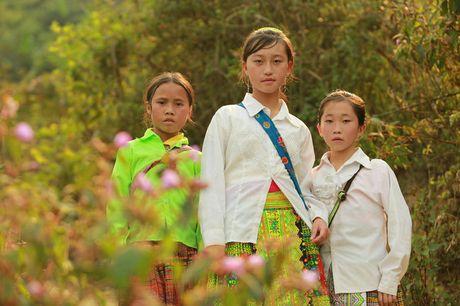 Ba tac pham phat thanh truyen hinh Viet Nam tranh giai ABU Prize 2016 - Anh 1