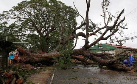 Sieu bao Hai Ma manh ngang ngua sieu bao Haiyan tan pha Philippines - Anh 2