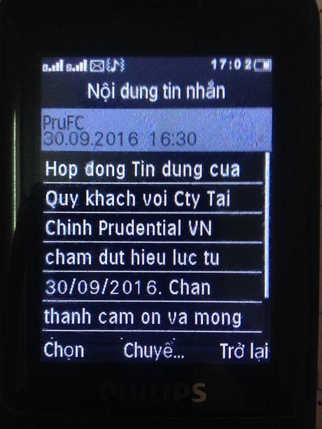 Cong ty Tai chinh Prudential tu y tru tien cua khach hang? - Anh 2