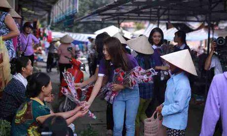 Thi sinh Hoa hau Viet Nam va hanh trinh 888 doa hong - Anh 1