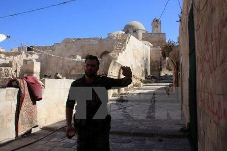 Ban tin 20H: Quan noi day Syria duoc 'bat den xanh' rut khoi Aleppo - Anh 1
