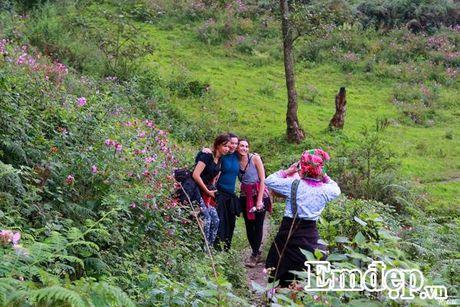 Trai nghiem du lich moi: Trekking o Sapa - Anh 6