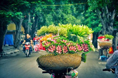 Chum anh dep nuc long nhung ganh hang hoa chi Ha Noi moi co - Anh 1