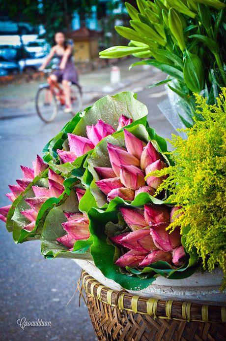 Chum anh dep nuc long nhung ganh hang hoa chi Ha Noi moi co - Anh 6