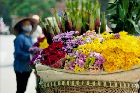 Chum anh dep nuc long nhung ganh hang hoa chi Ha Noi moi co - Anh 7