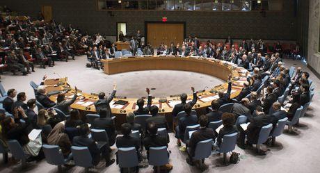 Hoi dong Bao an LHQ bat ngo chan nghi quyet cua Nga ve Syria - Anh 1