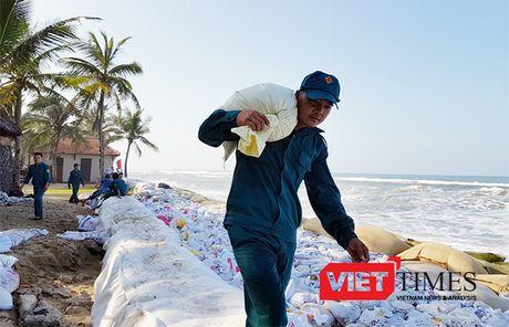 Hoi An: Hang tram nguoi no luc 'cuu' bo bien Cua Dai - Anh 2