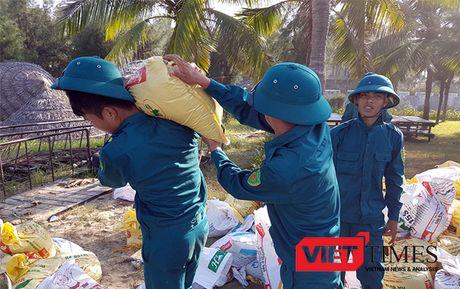 Hoi An: Hang tram nguoi no luc 'cuu' bo bien Cua Dai - Anh 5