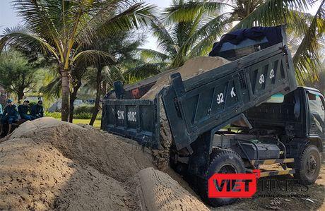Hoi An: Hang tram nguoi no luc 'cuu' bo bien Cua Dai - Anh 7