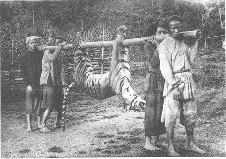 Bo anh hiem ve nguoi Viet Nam 100 nam truoc - Anh 6