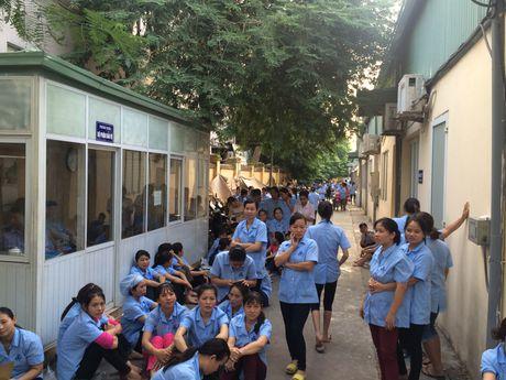 Buc xuc truoc quyet dinh bo nhiem, hang tram cong nhan may Thanh Tri ngung viec - Anh 1