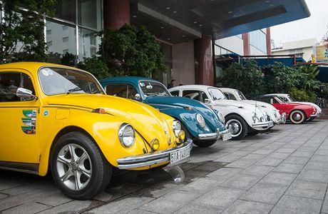 Kham pha huyen thoai 'xe con bo' Volkswagen Beetle - Anh 2