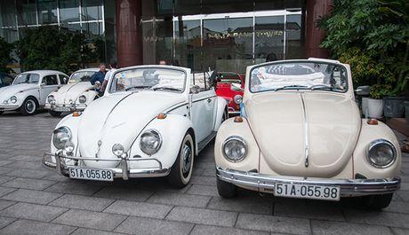 Kham pha huyen thoai 'xe con bo' Volkswagen Beetle - Anh 3