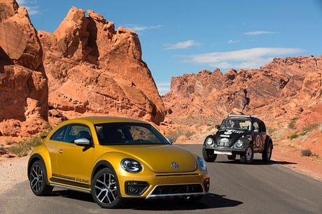 Kham pha huyen thoai 'xe con bo' Volkswagen Beetle - Anh 4