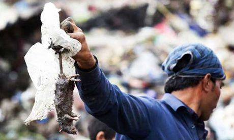 Indonesia: Bat mot con chuot, nhan gan 2 USD - Anh 1
