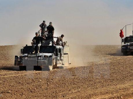 Phien quan IS bat giu 550 gia dinh lam 'la chan song' o Mosul - Anh 1