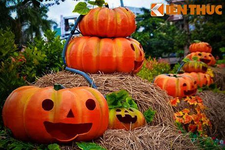 Gioi tre Sai thanh phan khich voi vuon bi ngo 'khung' don Halloween - Anh 1