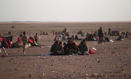 Phien quan IS bat dan thuong lam 'la chan song' o Mosul - Anh 1