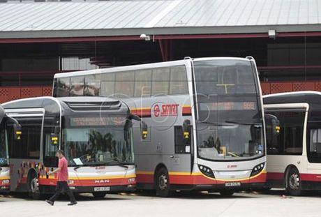 Singapore thu nghiem xe bus khong nguoi lai - Anh 1