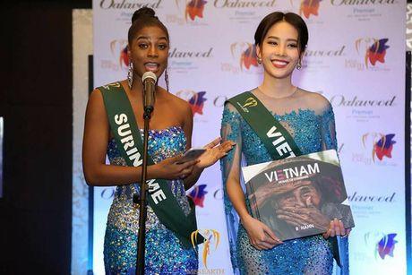 Nam Em tiep tuc rinh giai tai Hoa hau Trai dat 2016 - Anh 5
