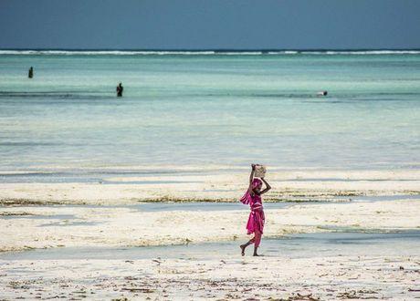 Nhung nguoi san bach tuoc o Zanzibar - Anh 2