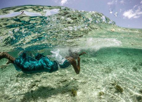 Nhung nguoi san bach tuoc o Zanzibar - Anh 8