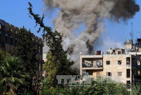 Nga keo dai lenh ngung ban o Aleppo - Anh 1