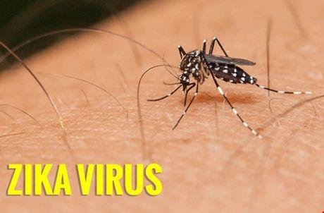 Lien tiep phat hien them tre mac di tat dau nho nghi do virus Zika o Viet Nam - Anh 1