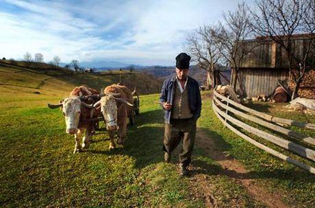 Ve dep hoang da cua Romania - Anh 5