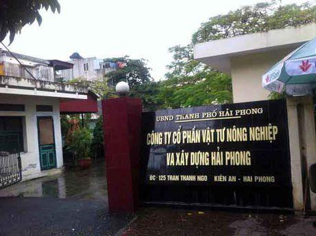 Cty Co phan Vat tu nong nghiep va Xay dung Hai Phong: Chay y nop tien lai suat vao ngan sach TP - Anh 1