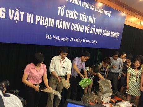 Tieu huy 2.349 tang vat vi pham hanh chinh ve so huu cong nghep - Anh 1