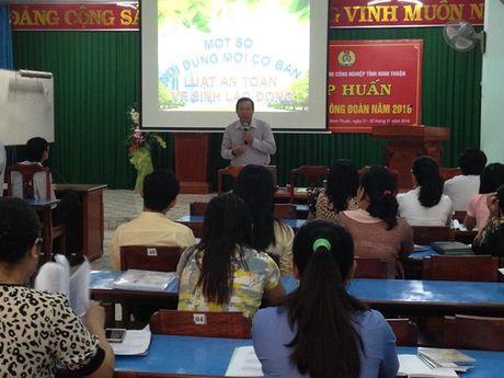 Cong doan Cac KCN Ninh Thuan: 32 CDCS tham gia tap huan nghiep vu - Anh 1