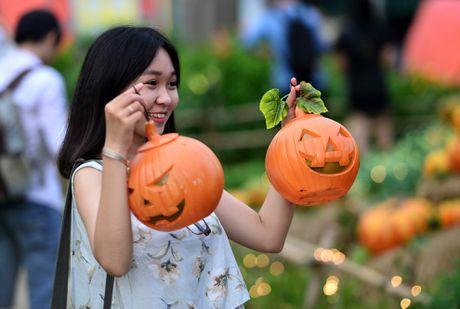 Vuon bi ngo dam chat Halloween o Sai Gon - Anh 15