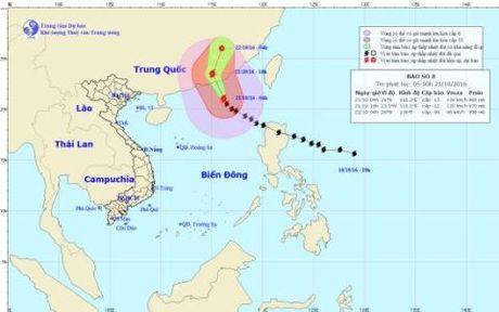 Bao so 8 dang tien sat vao Hong Kong (Trung Quoc) - Anh 1
