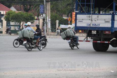 Buon lau thuoc la bung phat tai khu vuc phia Nam - Bai 1 - Anh 1