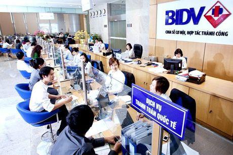BIDV bat ngo tra co tuc bang tien mat theo yeu cau cua Bo Tai chinh - Anh 1