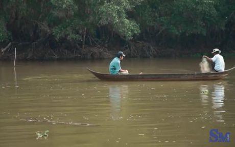 Nao long kham pha Tram Chim Dong Thap mua nuoc noi - Anh 15