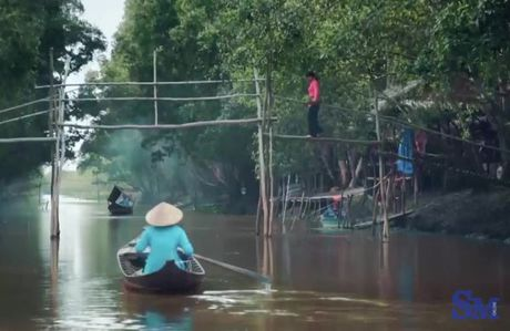 Nao long kham pha Tram Chim Dong Thap mua nuoc noi - Anh 17