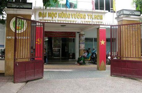 Ong Dang Thanh Tam la Chu tich HDQT cua Dai hoc Hung Vuong - Anh 1