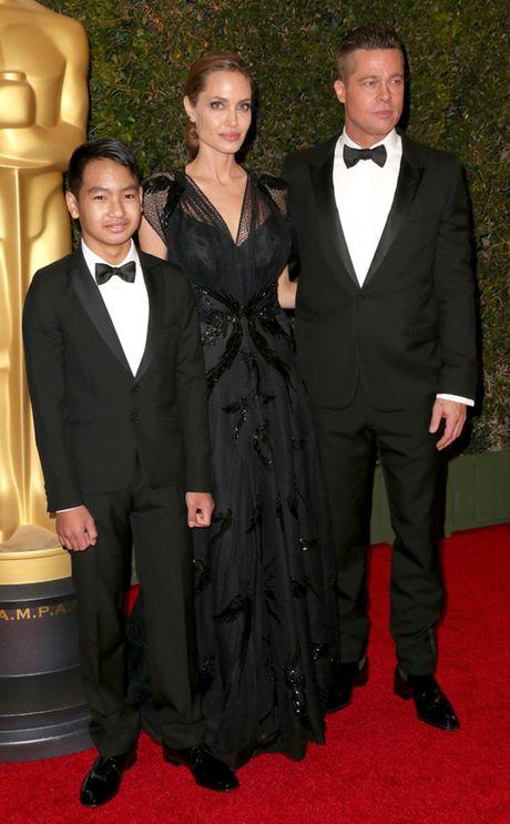 Brad Pitt tu choi nop don ly hon voi Angelina Jolie - Anh 2