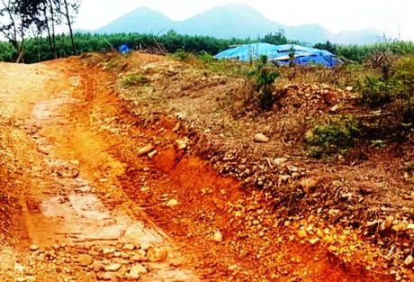 Lao nong trung dam trong mo vang khe Rui Rui - Anh 1