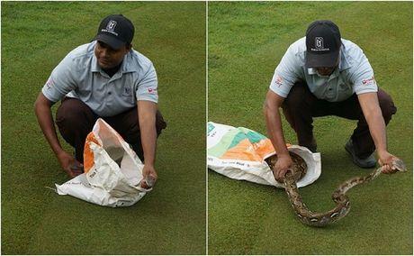 Tran dai 2 met 'DAI NAO' giai golf PGA Tour o Malaysia - Anh 1