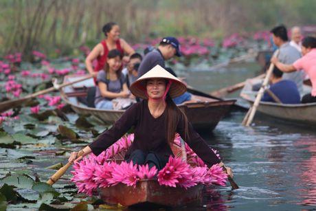 Suoi Yen chua Huong ruc ro sac hoa sung - Anh 3