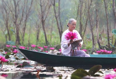 Suoi Yen chua Huong ruc ro sac hoa sung - Anh 4
