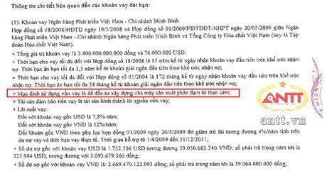 Dam Ninh Binh hoat dong ra sao duoi thoi Pho TGD Nguyen Van Minh - Anh 2