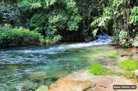 Ky thu khu tu nhien hoang da Pantanal - Brazil - Anh 25