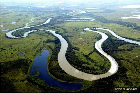 Ky thu khu tu nhien hoang da Pantanal - Brazil - Anh 2