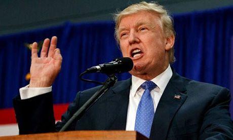 Trump cong bo ke hoach '100 ngay dau tien lam tong thong' - Anh 1