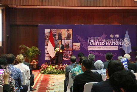 Indonesia-LHQ thuc day hop tac cac ben vi phat trien ben vung - Anh 2